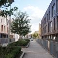 Claredale Street housing